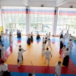 phoca_thumb_l_aikido_all