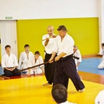 phoca_thumb_l_aikido_seminar